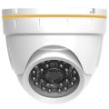 GF-IPVIR4306MP2.0 v2 IP-камера купольная уличная Giraffe