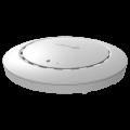 Точка доступа однодиапазонная CAP300