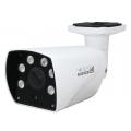 ACE-ABV50 IP-камера уличная EverFocus