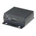 Преобразователь формата HDMI в Composite Video HC01